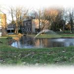 Springbrunnen Teich